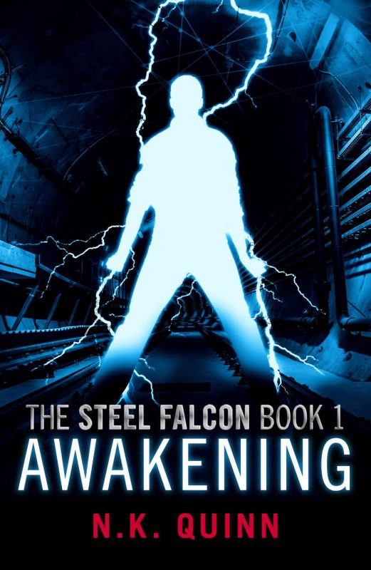 The Steel Falcon Book 1: Awakening